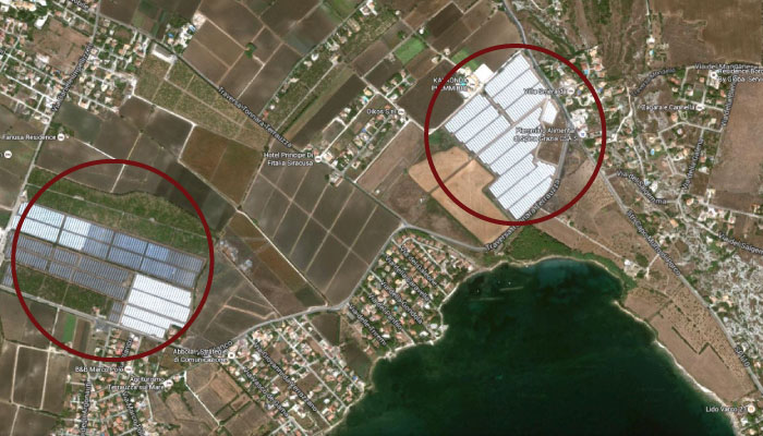 terreni-coltivazione-pomodoro-ciliegino-datterino-siracusa-oasi-marina-protetta-plemmirio-agricola-giardina